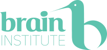 Documente Brain Institute